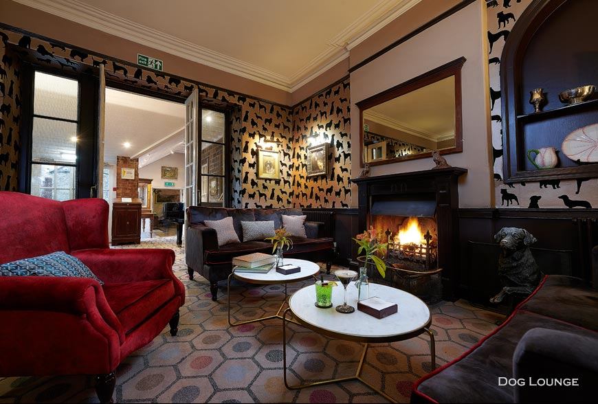 DABA dog friendly hotel lounge Rachel McLane Ltd